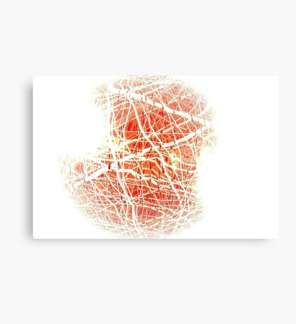 Complexities of the Heart // Dry Canvas Print