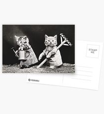 Vintage Puppies and Kittens Note Cards Postcards