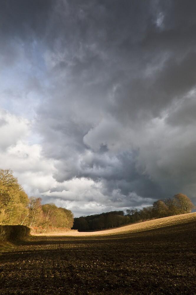 Winter field, showers (portrait) by Gary Eason