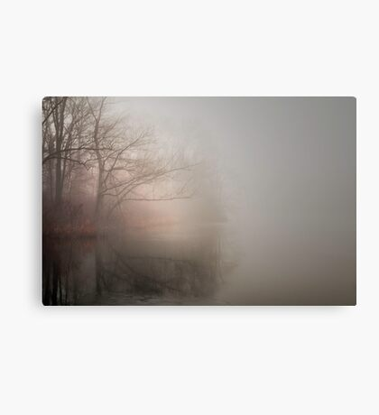Pond in Winter Canvas Print