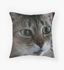 Transfixed Abyssinian  Throw Pillow