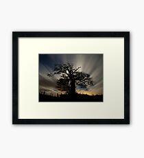 Tree on Raddon Top in Moonlight Framed Print