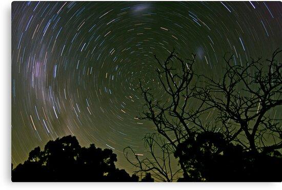 Circling Stars by paulmcardle