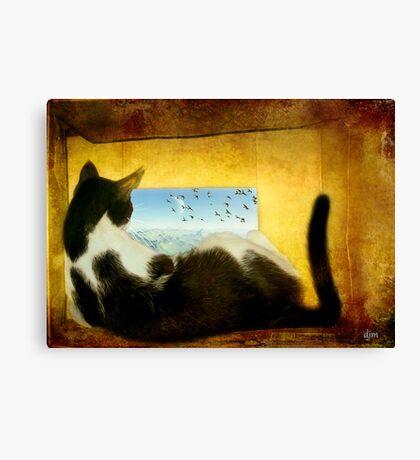 Finn's World Canvas Print