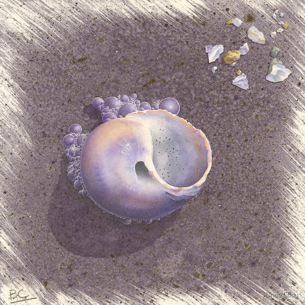 Crane Beach Bubbles by Brian Cody
