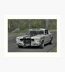 Ford Mustang GT350 - 1965 Art Print