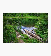 Tipsoo Lake Washington Photographic Print