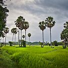 Kampong Chhnang by Kerry Duffy