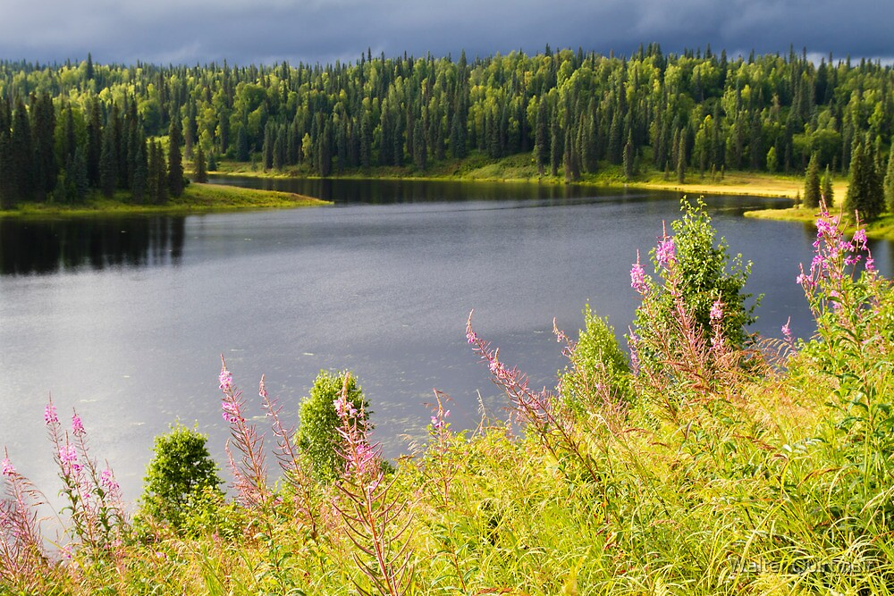 Alaska Lake by Walter Quirtmair