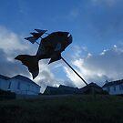 Port Isaac by Matt Mawson