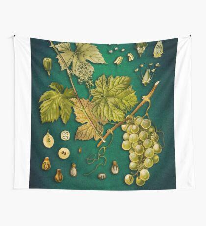 Vitis vinifera Wall Tapestry