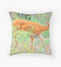 Rural Country Garden Throw Pillow