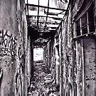 Walk of Ruin by Andrew Woodman