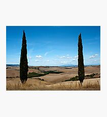 Sentinels Photographic Print
