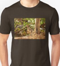Female Ring-necked Pheasant - Phasianus colchicus T-Shirt