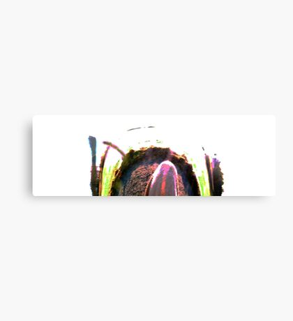 Relativity Canvas Print