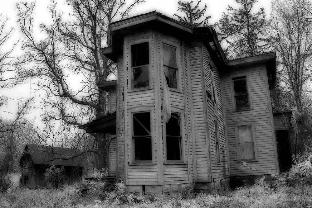 Ghostly Abode by Lynn Gedeon