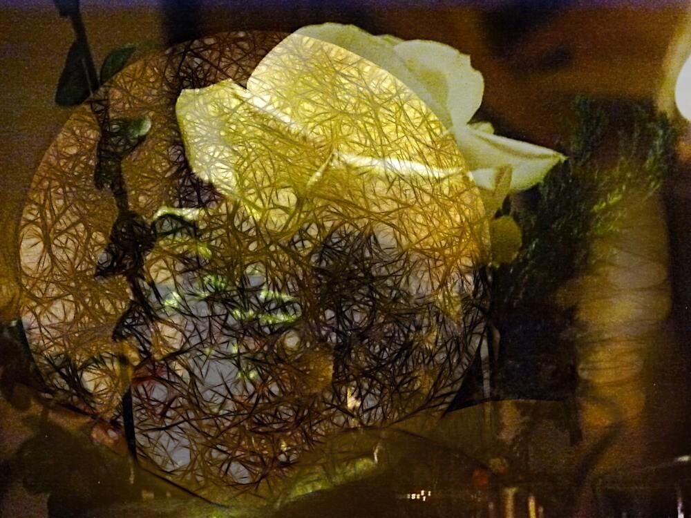 The Secret Rose by Benedikt Amrhein