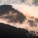 Ridge Cloud - Great Smoky Mountains National Park, North Carolina by Jason Heritage