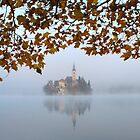 Misty Lake Bled by Ian Middleton