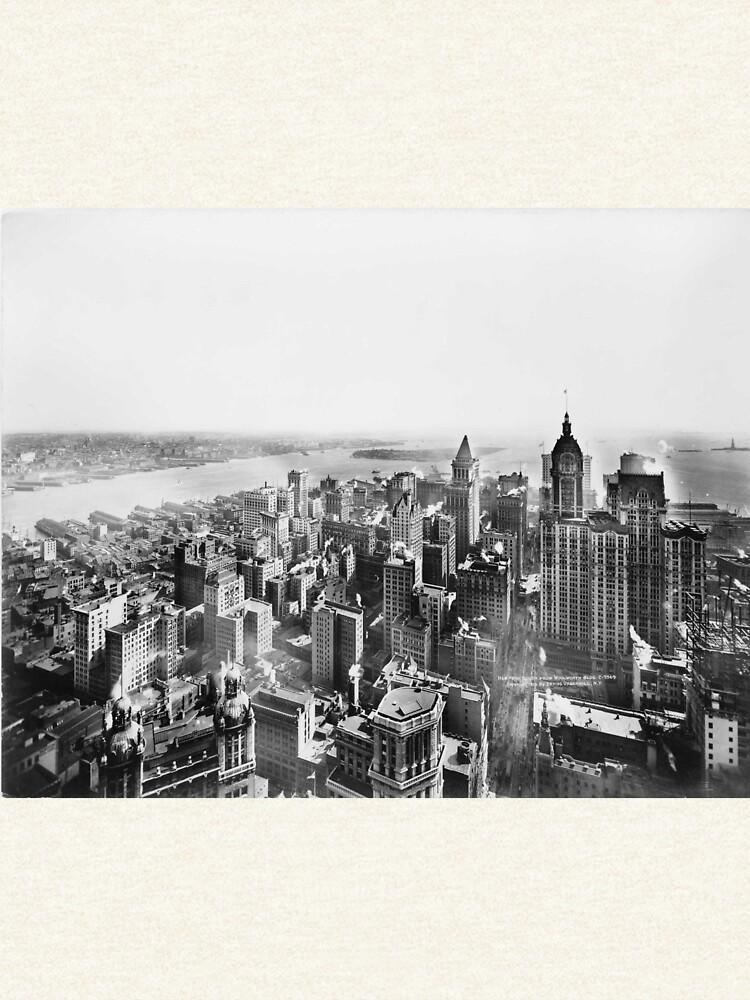 Vintage Lower Manhattan Skyscraper Photo (1913) de BravuraMedia