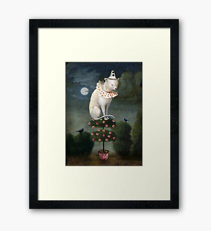 Harlekin Cat Framed Print