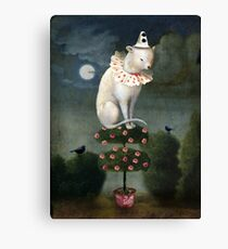 Harlekin Cat Canvas Print