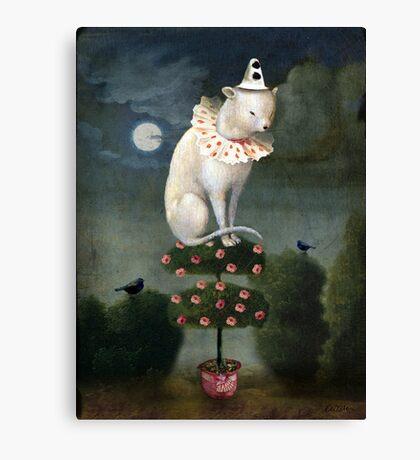 Harlekin Cat Canvas Print