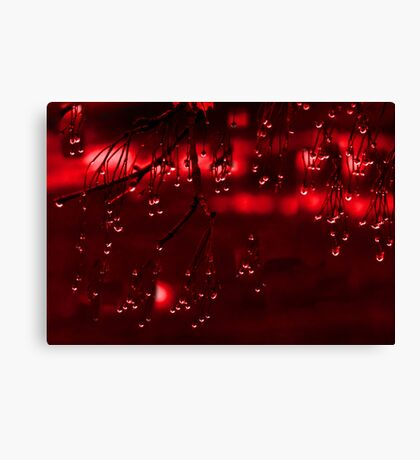 Diamonds of Red Droplets (best viewed larger) Canvas Print
