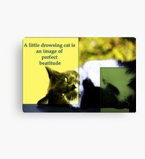 Drowsing Cat Canvas Print