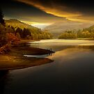 Tranquility by Martin Jones