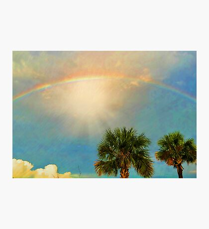 Peace In The Rainbow Photographic Print