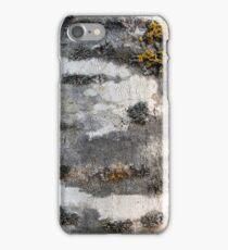 Aspen iPhone Case/Skin