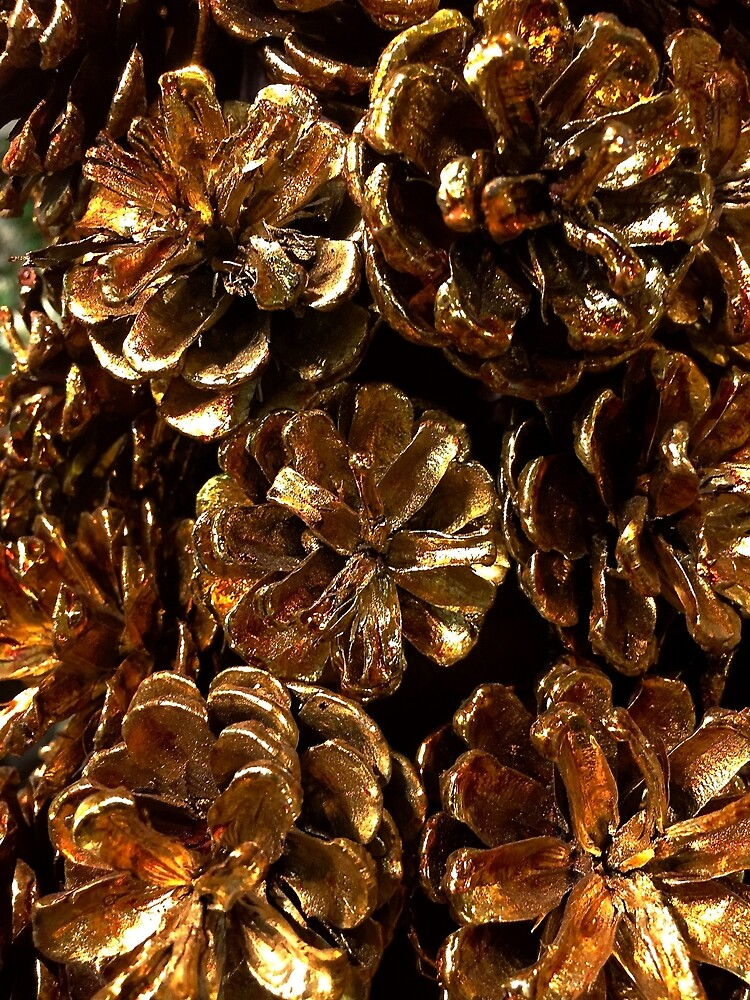 Golden Pine Cones by Douglas E.  Welch