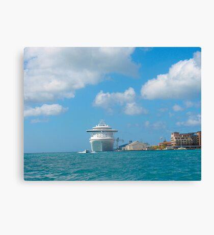 Sea excursion Canvas Print