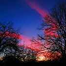 A Lombard Sunset by Marija