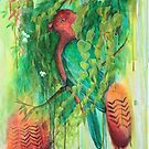 King Parrot by Miesha