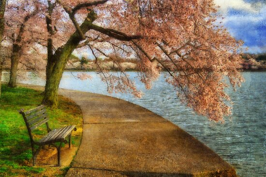 Meet Me At Our Bench by Lois  Bryan