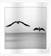 Baltic Waves picture - black and white photograph with white border Poster