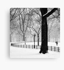 Central Park Walker Canvas Print
