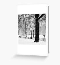 Central Park Walker Greeting Card