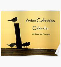 Avian Collection Calendar Cover Poster