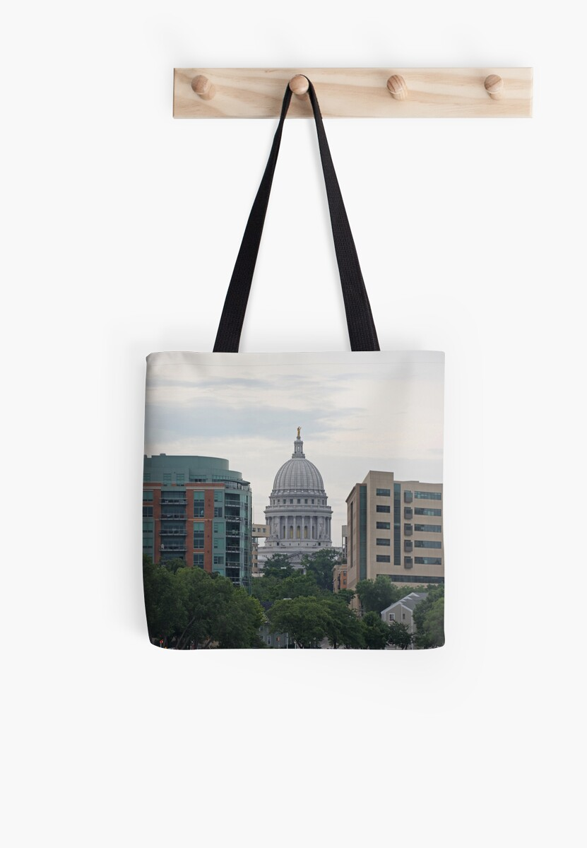 Madison Wisconsin the Capitol Building by Thomas Murphy