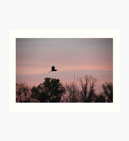 Great Blue Heron on Pink Sky Art Print