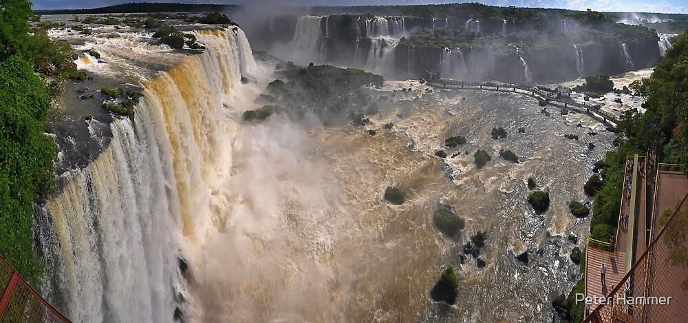 Iguazu Overview by Peter Hammer