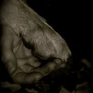 Put Your Hand In My Hand. by Lou Wilson