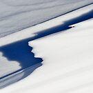 Snow Sculpture by Kasia Nowak