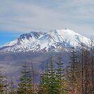 Mount St. Helens by Jennifer Hulbert-Hortman
