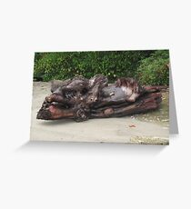 Funky Driftwood Greeting Card
