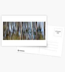 Silvery reflections Postcards